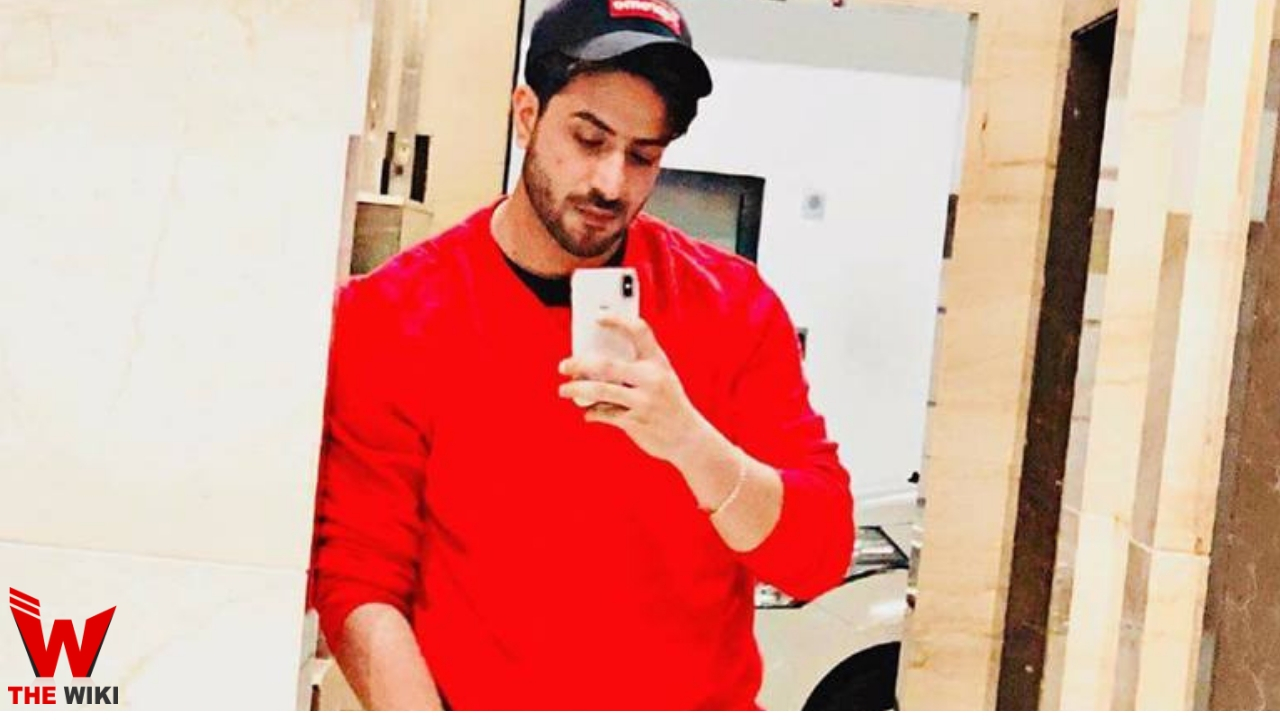 Aly Goni (Actor)
