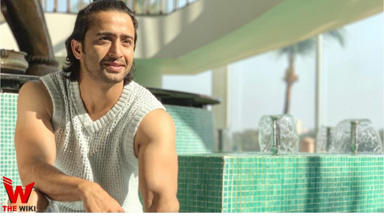 Shaheer Sheikh (TV Actor)