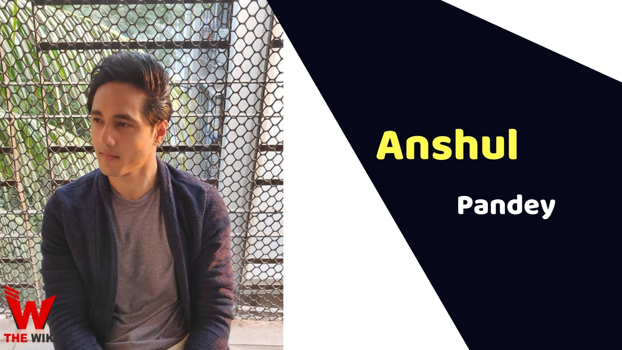Anshul Pandey (Actor)