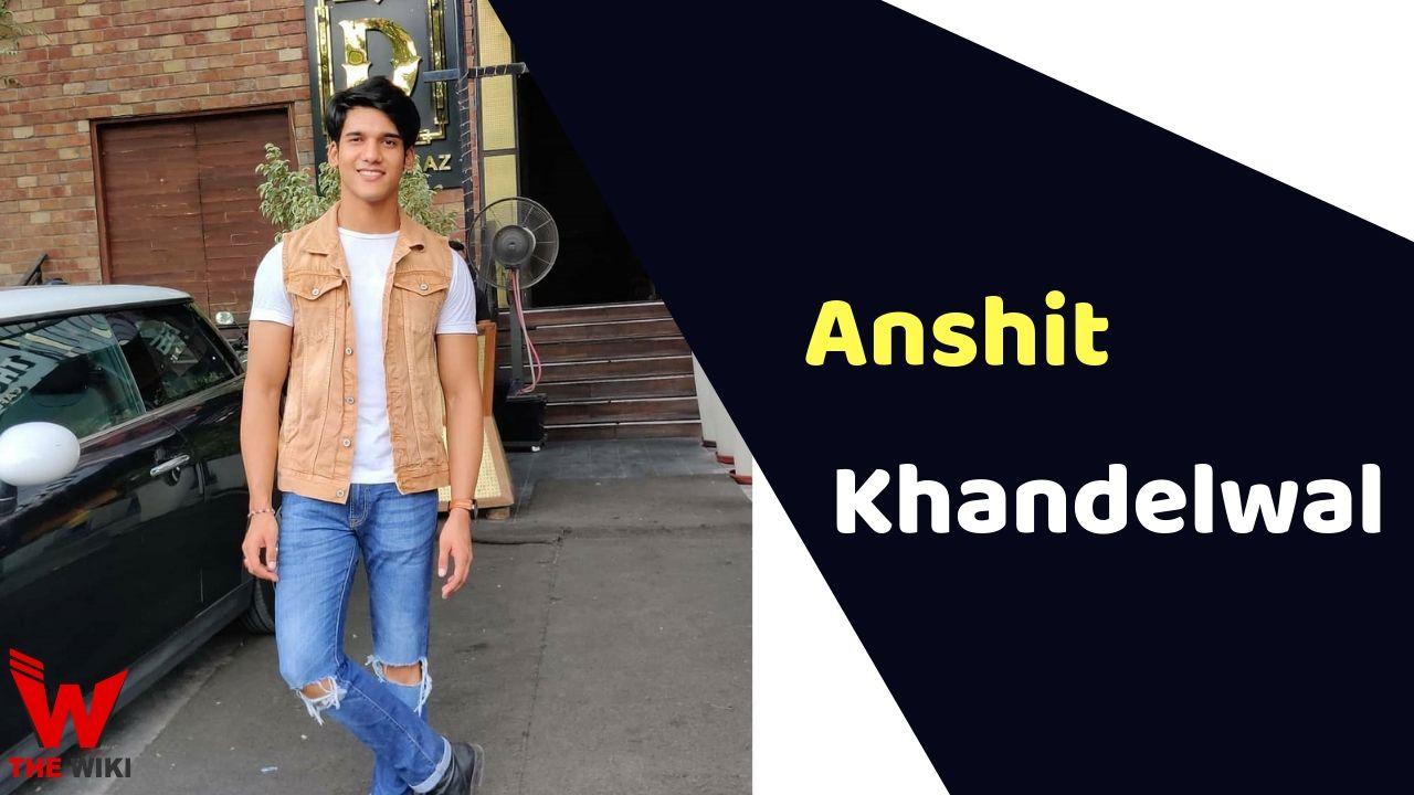 Anshit Khandelwal (MTV Splitsvilla)