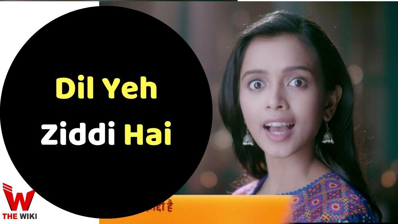 Dil Yeh Ziddi Hai (Zee TV)