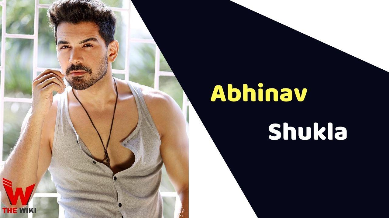 Abhinav Shukla (Actor)